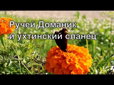 Ручей Доманик и ухтинский сланец / Канал Ухта