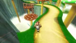 [MKWii TAHF] Mushroom Gorge Freerun