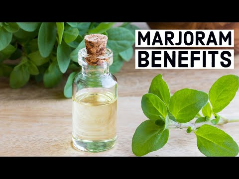 10 Amazing Health Benefits And Uses Of Marjoram