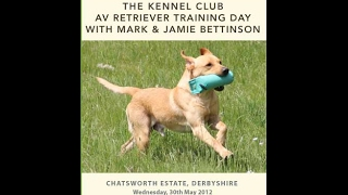 The Kennel Club Retriever Training Day With Mark And Jamie Bettinson