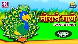 मोराचे गाणे - The Peacock