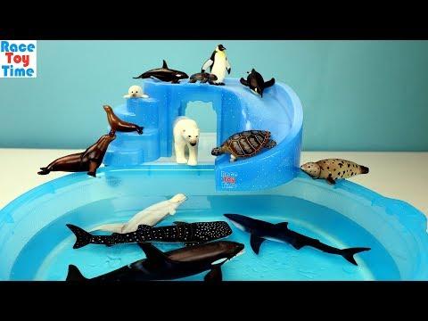 Sea Animals Toys Takara Tomy Ania Collection