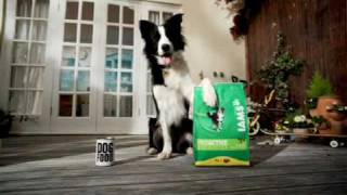 GardeningEssentials.co.uk - 3kg Iams Dog Food equivalent to over 37 tins of wet food! | GardenTech.co.uk
