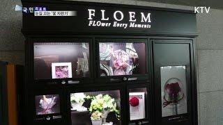 [국민리포트] '꽃 자판기' 졸업철 인기만점
