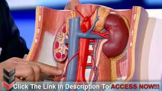 Tips On How to Prevent Kidney Disease Naturally