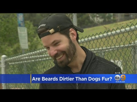 Terry J - Men With Beards Carry More Germs Than Dogs, Study Finds!