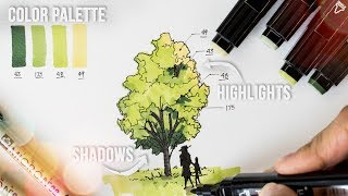 Architecture Trees Sketching Tips