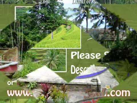 Exotic PROPERTY 6,500 m2 LAND SALE IN UBUD BALI TJUB479