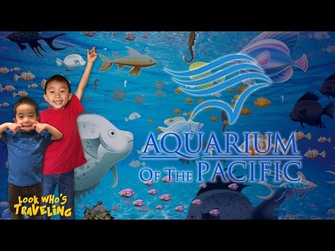 Aquarium of the Pacific (Moompetam Native American Festival): Look Who's Traveling
