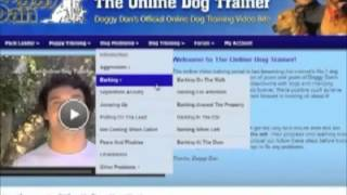 Doggy dan dog training reviews scams - potty training a dog