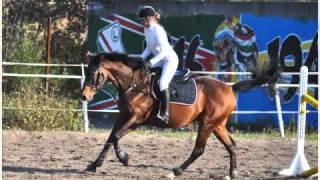 Hubertus 2010