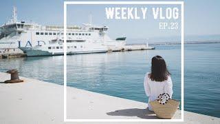 Weekly Vlog 23|第一次和德国朋友出去旅游|古董市场淘到宝|家庭烧烤