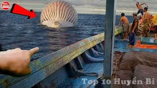 8 Thứ Kỳ Lạ Và Bí Ẩn Đến Khó Tin Mà Con Người Bắt Gặp Trên Biển | Top 10 Huyền Bí