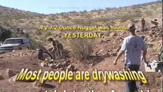 Mojave Desert Gold Nugget - 2011 older