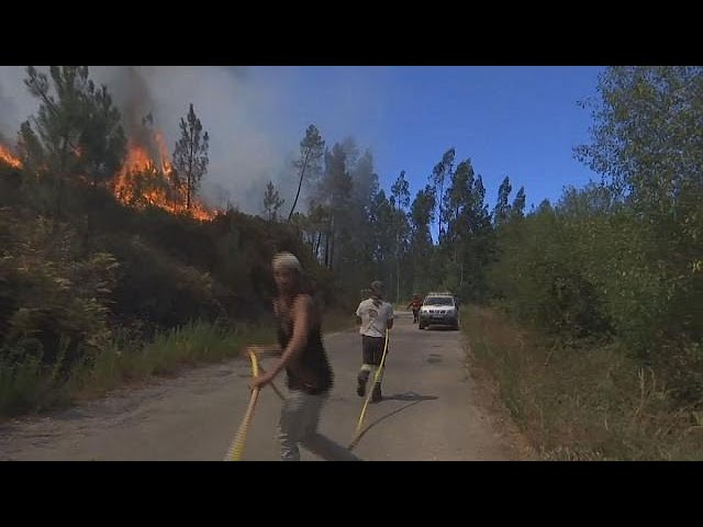 Thousands of firefighters battle central Portugal wildfires