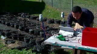 Urban gardening goes high-tech in Edmonton community