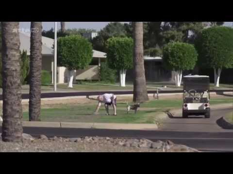 Sun City, Arizona Le paradis des retraités Documetaire Arte HD