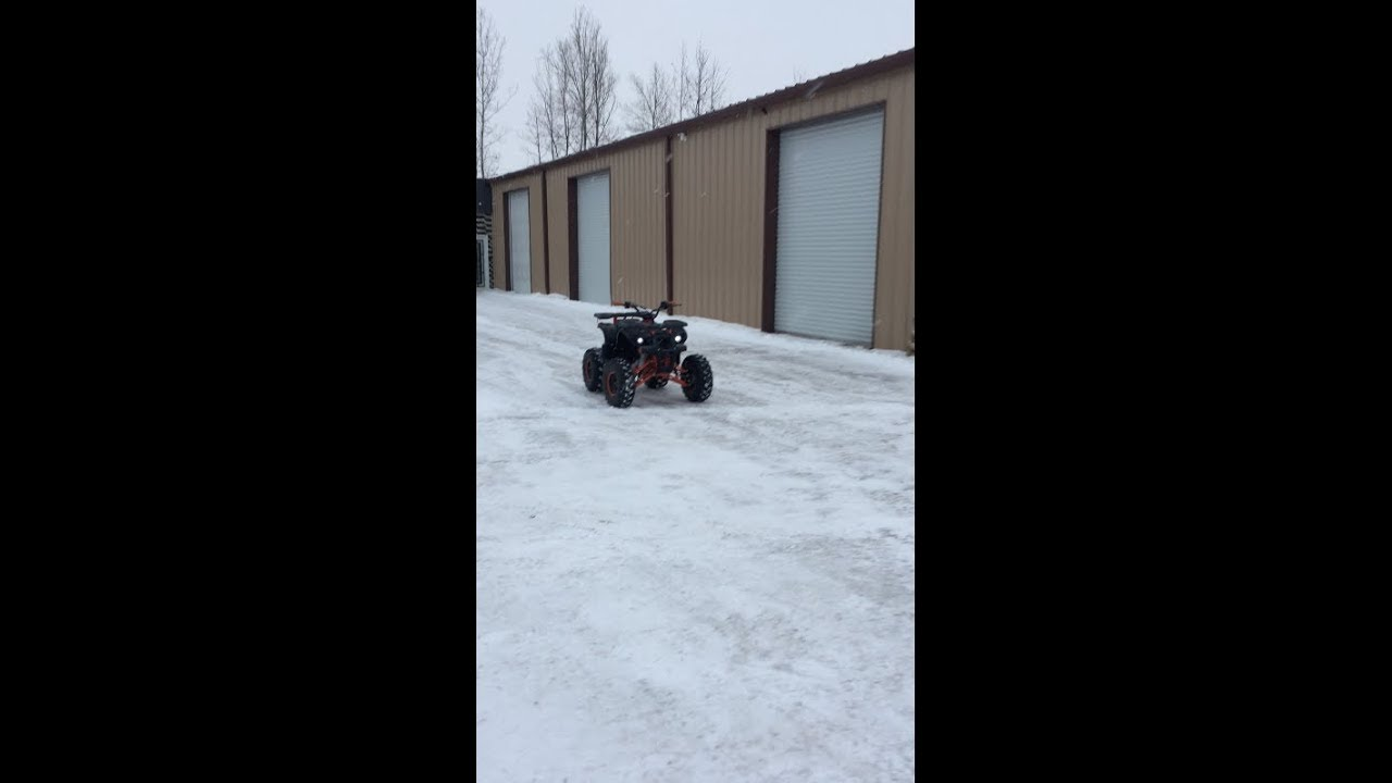 Venom Grizzly 125cc Gas Powered ATV Riding Video - 1-855-984-1612