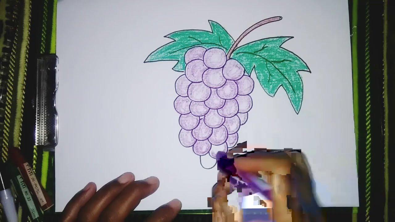 Download Cara Menggambar dan Mewarnai buah Anggur yang mudah tapi hasilnya bagus