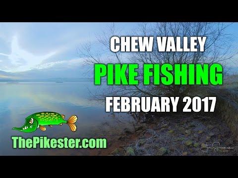 Chew Valley Lake Pike Fishing February 2017