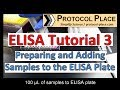 ELISA Tutorial 3: Preparing and Adding Samples to the ELISA Plate