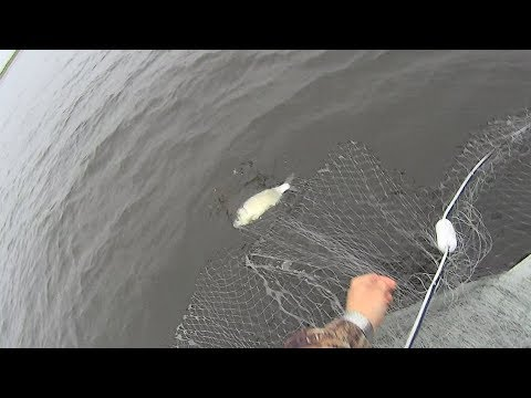 ШОК, а не РЫБАЛКА. Ловля рыбы сетями. Fishing nets.