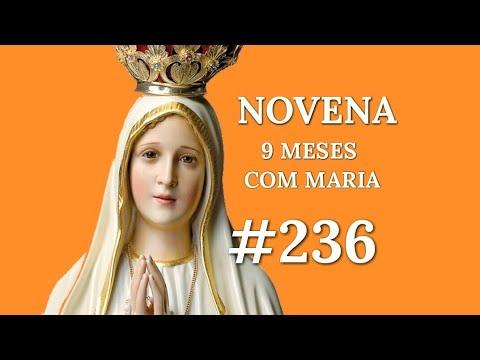 [#236] NOVENA 9 MESES COM MARIA 236° DIA - 15 de Novembro 2018.