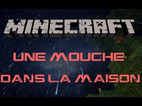 map aventure minecraft une mouche dans la maison youtube. Black Bedroom Furniture Sets. Home Design Ideas