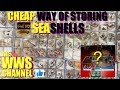 How to display and store sea shells !  Seashell Collection