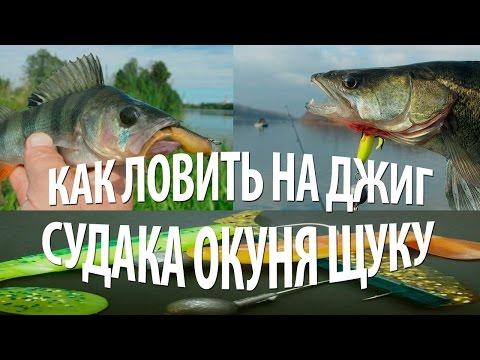 как ловить рыбу осенью на озерах