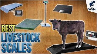 10 Best Livestock Scales 2018