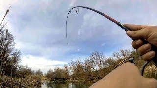 Одна поклевка НО ЗАТО КАКАЯ Рыбалка на микроречке весной Рыбалка в ручье на спиннинг