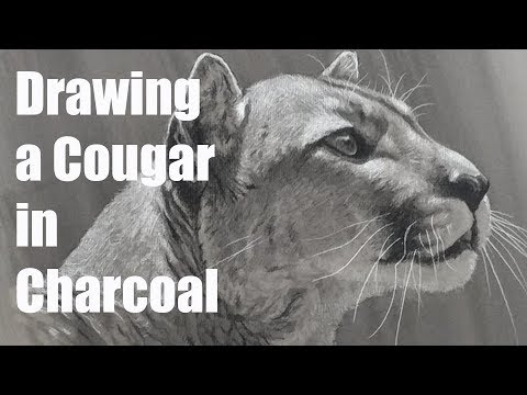 Live Stream - Drawing with Charcoal