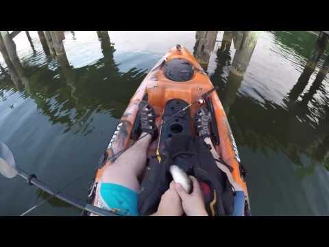 Trophy White Perch Fishing On The Chesapeake Bay