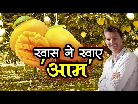 Australian Fastest Bowler Brett Lee Reached At Indore | Talented India News thumbnail
