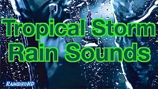 """Heavy Rain Sounds"" 8 Hours of Pouring Rain and Thunder during Tropical Storm"