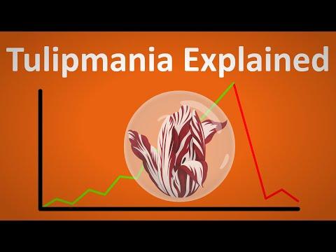 Tulipmania: When a