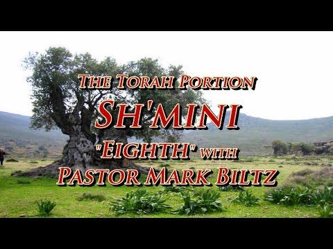 Saturday, April 22, 2017: 8th (Shemini)