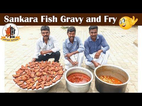 அசத்தலான சங்கரா மீன் குழம்பு | சுவையான மீன் வறுவல்  | Red snapper fish  | Mams Krishnan