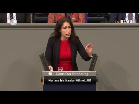 Bundestag. Tumult & Geschrei (Thema: Gewalt gegen Frauen) Mariana Harder-Kühnel AfD 12.12.2019
