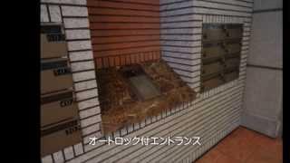 賃貸マンション 【アルファビル】 1LDK 都筑区 センター北駅 徒歩2分