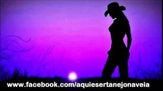 Vidro fumê -  Bruno e marrone -  #sertanejouniversitário #aquiésertanejonaveia