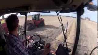 Canola Harvest Canada 2013 (Alberta)