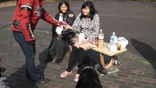 Facebookページ 東京バイクミーティング http://www.facebook.com/tokyo...