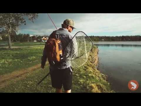 Trouts Fly Fishing: Mr. Whiskers - Fly Fishing For Carp In Denver