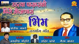 उडत्या पाखरांची पिसे मोजणारा भिम - Udtya Pakharanchi Pise Mojnara Bhim - Santosh Gamre Jaibheem Song