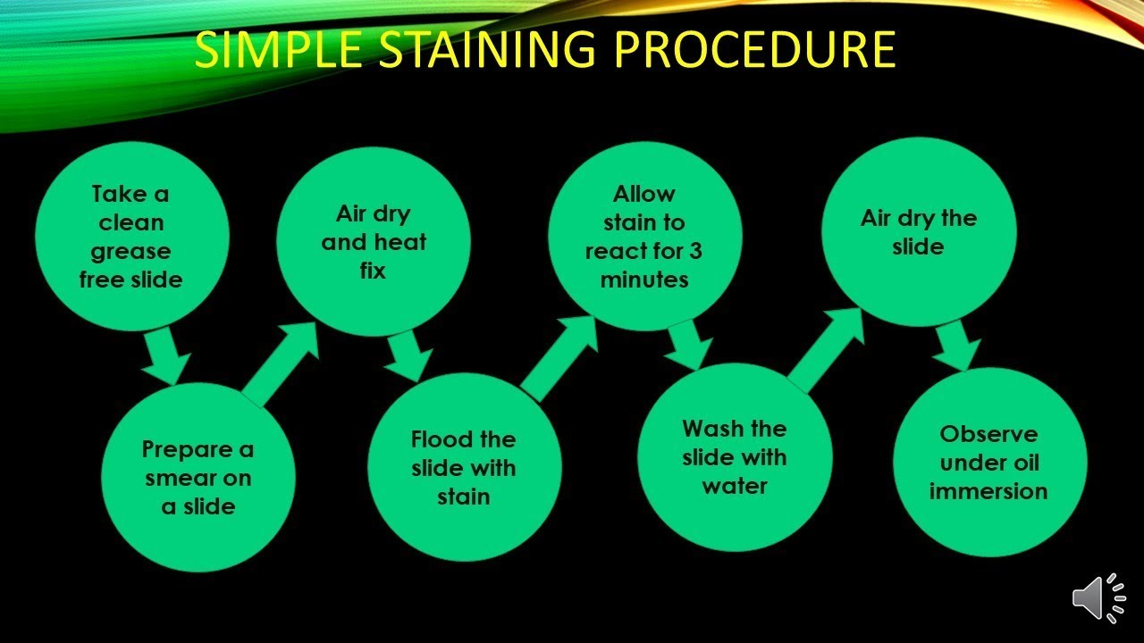 Simple Staining Procedure and its Mechanism