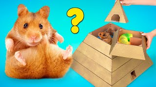 My Funny Pet Hamster in 6-Level Pyramid Maze 🐹