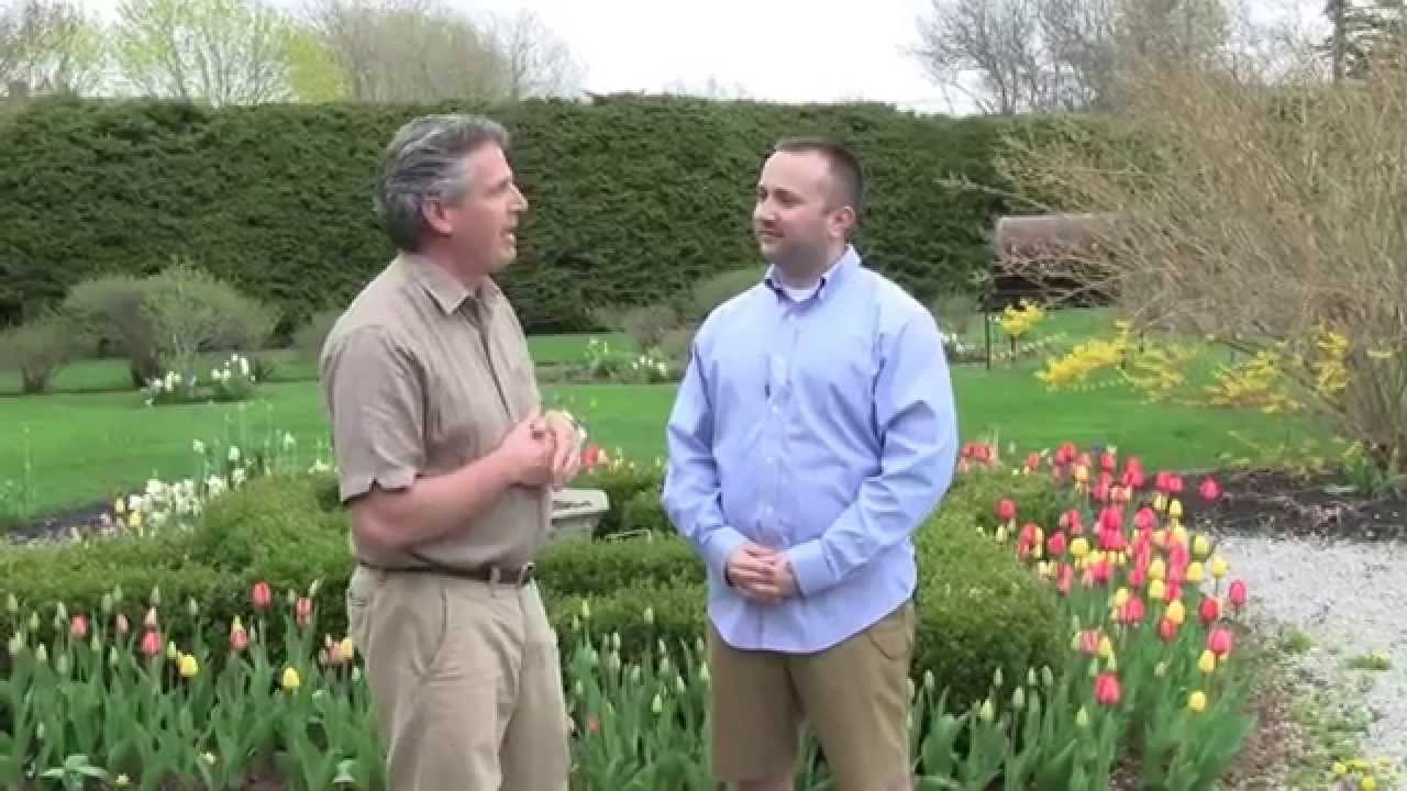 Planning A Flower Bulb Garden   Tips For Beginners.