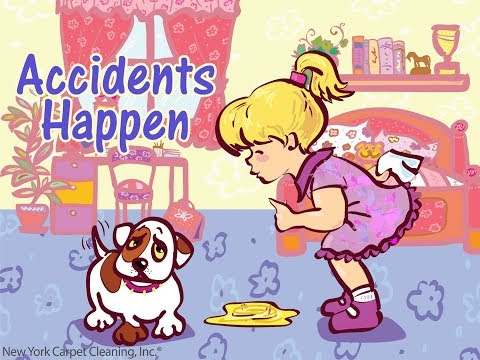 Pet Stain and Odor Removal Services in NY - NY Carpet Cleaning,® Inc..